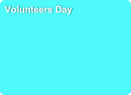 Volunteers Day